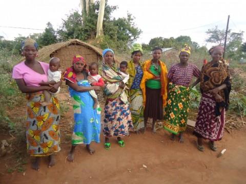 Women_Farmers_in_Itoculu_Monapo_District_Mozambique-e1457993577483